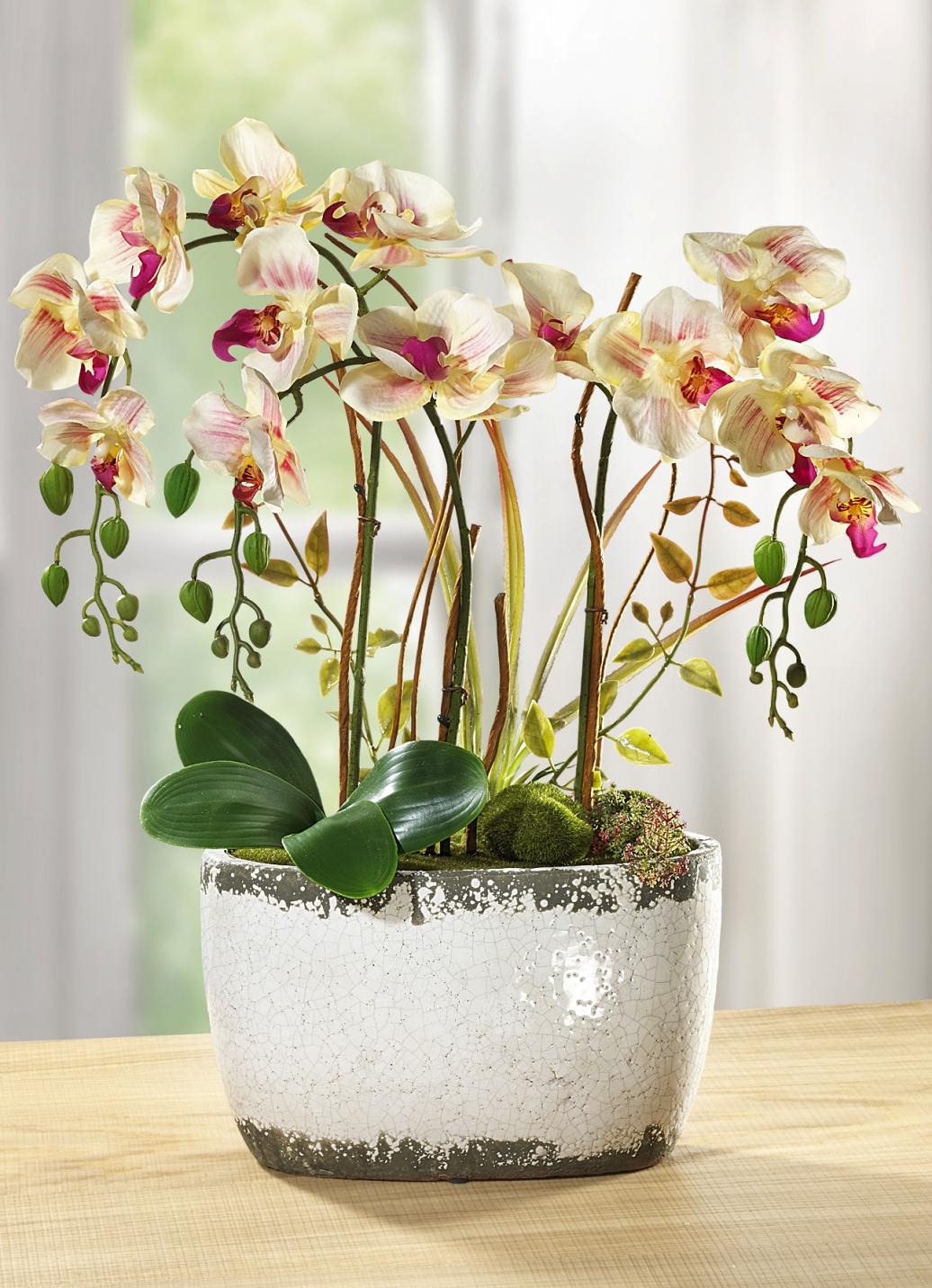 orchidee im keramiktopf kunst textilpflanzen. Black Bedroom Furniture Sets. Home Design Ideas