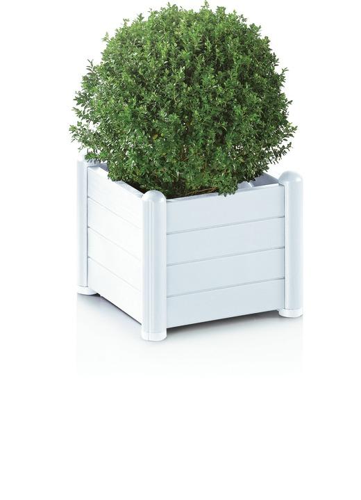 pflanzk sten verschiedene ausf hrungen blument pfe und pflanzgef sse brigitte st gallen. Black Bedroom Furniture Sets. Home Design Ideas