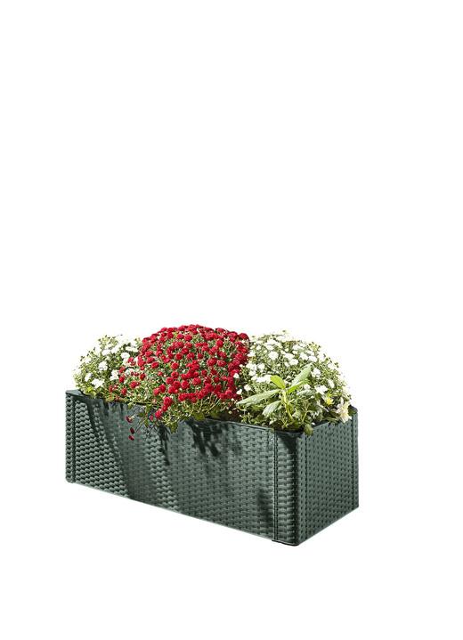 pflanzkasten mit spalierwand in verschiedenen ausf hrungen blument pfe und pflanzgef sse. Black Bedroom Furniture Sets. Home Design Ideas