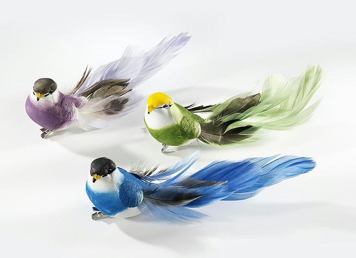 Vögel, 3er-Set